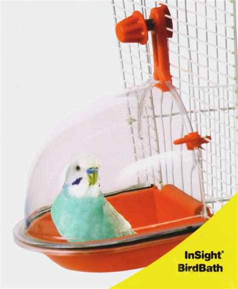 what and why pet bird cage accessories wyld s wingdom