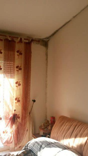 muffa in da letto come togliere la muffa dal muro della da letto