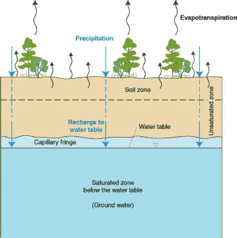 aquifer anatomy