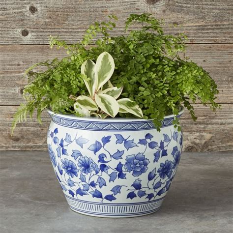 blue white ceramic planter large williams sonoma