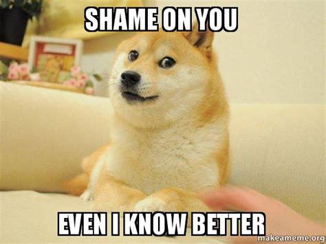 Shame On You Meme - shame on you even i know better doge make a meme