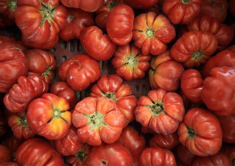 alimenti contro le rughe in pomodori cavoli e spinaci arma di difesa contro le