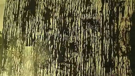 how to paint tree bark texture faux paint effect tree bark wall texture