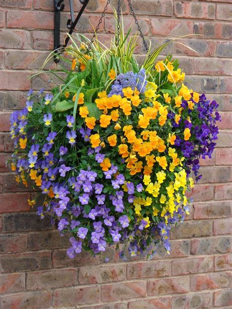 hanging basket design home hanging baskets