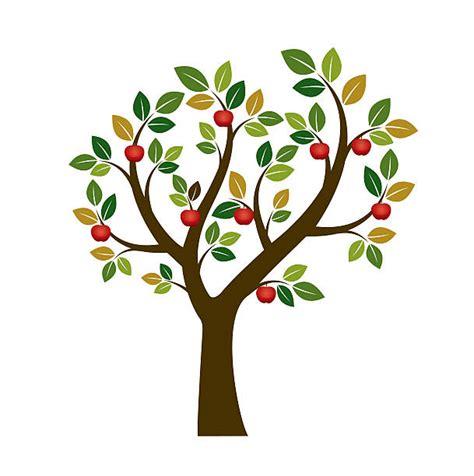 apple tree clipart royalty free apple tree clip vector images