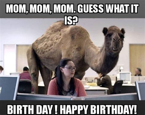 Happy Birthday Mom Meme - 100 ultimate funny happy birthday meme s my happy