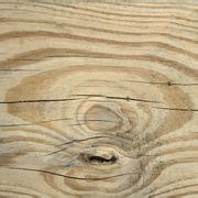 Distressed Wood Floors Dogs - 1000 ideas about distressed wood floors on