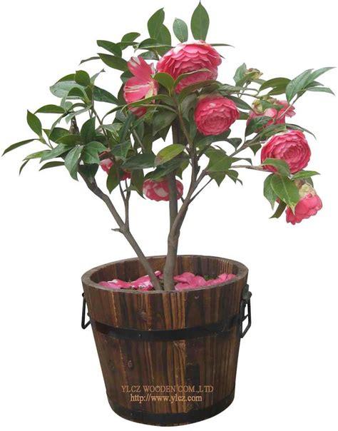 plant potters 100 plant potters plants pots u0026 stands ikea