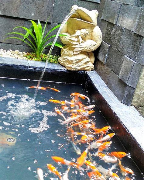 desain kolam ikan minimalis  lahan sempit terbaru  dekor rumah