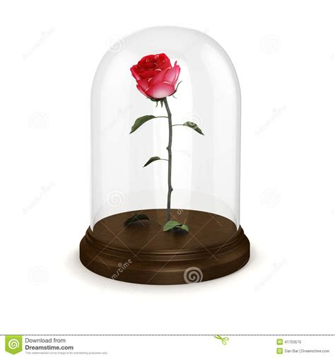 forever rose in glass dome forever rose in glass dome pink forever rose in glass dome