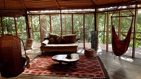 tree inside house rainforest trek barking farm