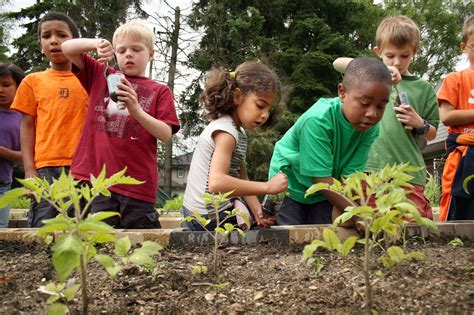 What Is A Community Garden by Community Garden Planning For Season Volunteer Rutherford