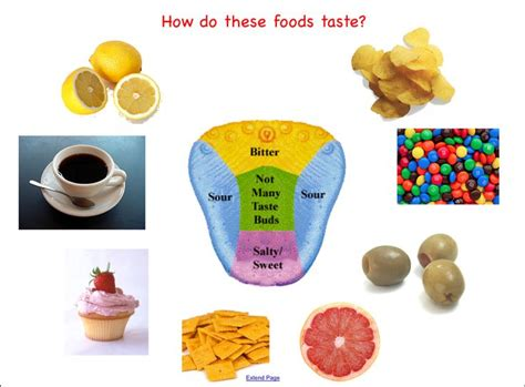 Do You Bold And Pungent Foods by 48 Best Five Senses Images On Kindergarten