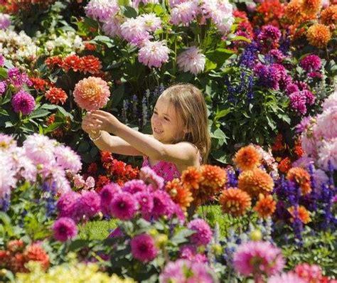 Garten Und Pflanzen 2307 by Dahlien Pflanzen Bl 252 Tenpracht Im Mediterranen Garten