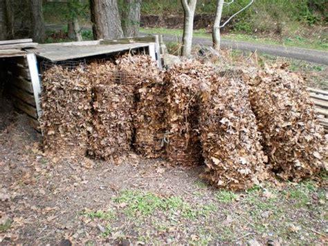 composting oak leaves simply survive farming update ft scarecrow steve