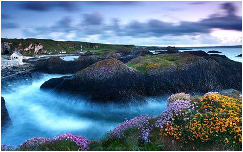 MOUNTAIN FLOWERS LAKE SCENERY HD WALLPAPER   9 HD Wallpapers