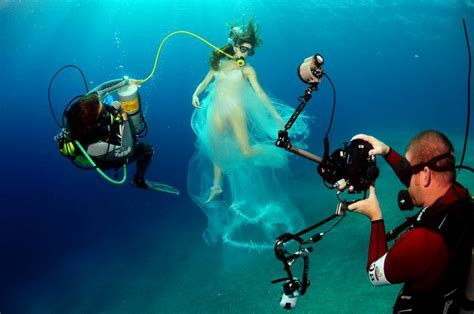 best underwater top underwater photography project 4 gallery