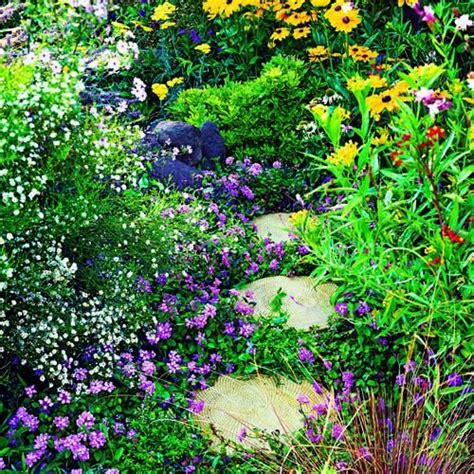 gardening for butterflies 17 best images about landscape design ideas on