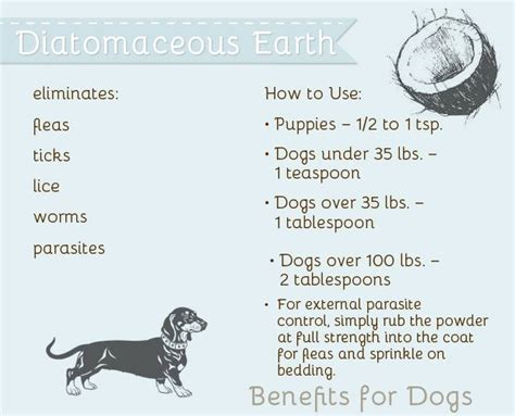 diatomaceous earth for dogs 1000 images about pets on allergies treats and pools
