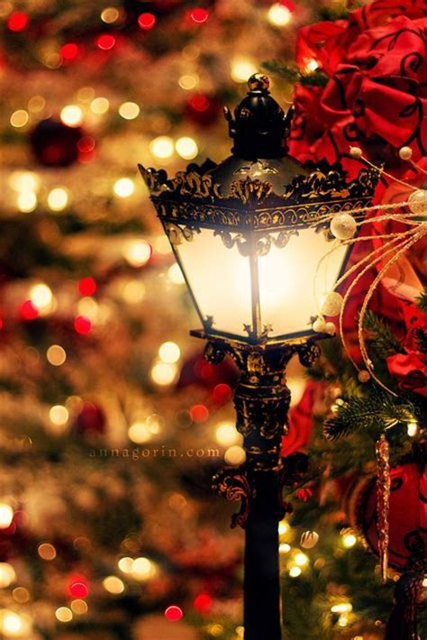 celebrations antique christmas lights 25 unique lights ideas on outdoor lights outdoor