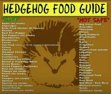 the curmudgeon s guide to home cooking and other feats books hedgehog food guide i hedgehogs to be