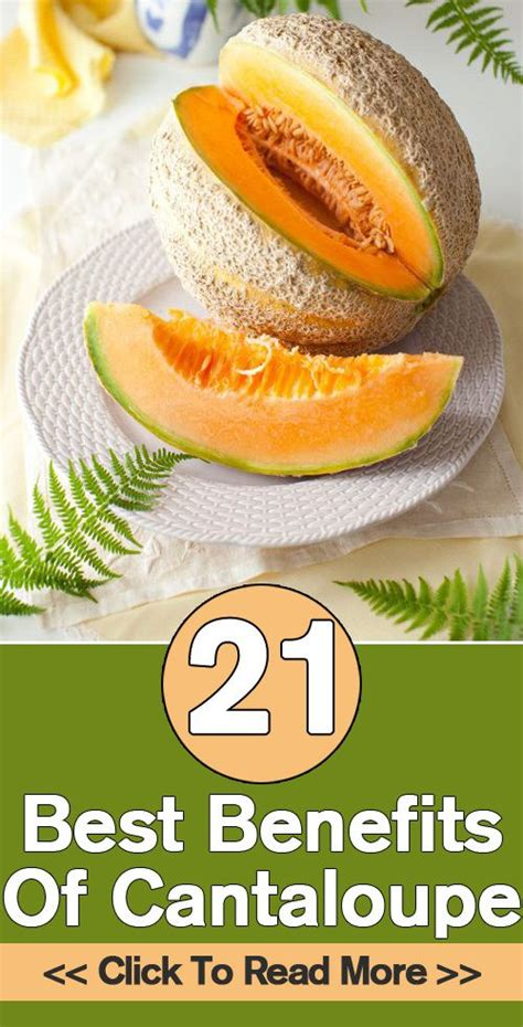 cantaloupe for dogs 23 best benefits of cantaloupe kharbuja for skin hair health for dogs health