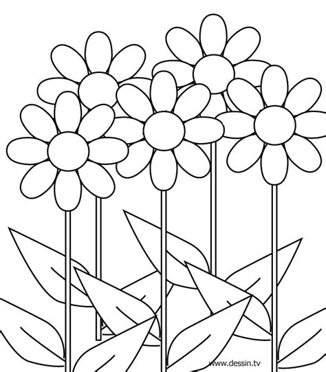 coloring pictures of flowers coloring flower