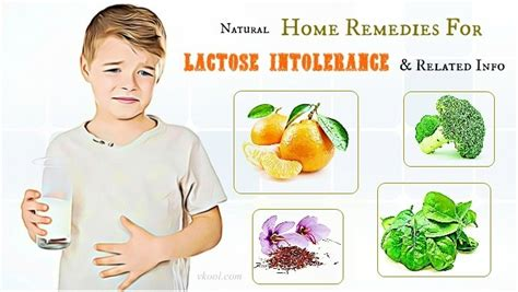 21 home remedies for lactose intolerance related