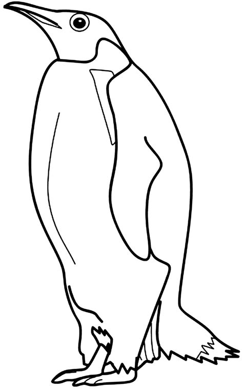 printable coloring pages penguin printable penguin coloring pages coloring me