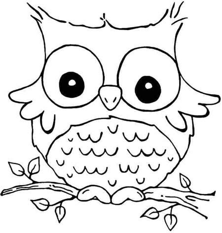 owl eyes coloring pages bajar lindos animales en dibujos para colorear