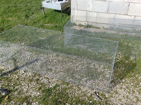 community gabbia ho quasi finito le gabbie per pulcini cocincina poultry