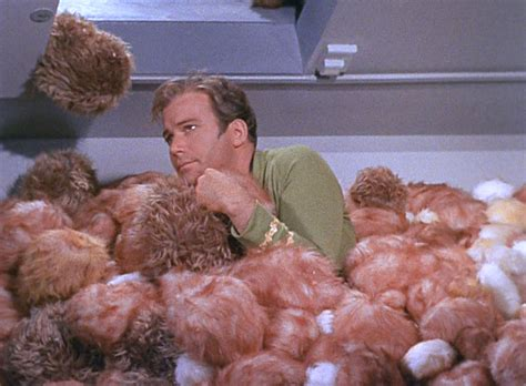 trek tribbles trouble with tribbles