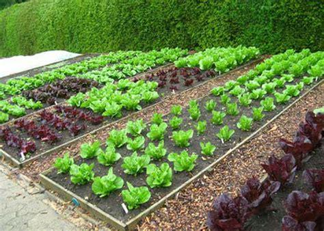 athens farm and garden