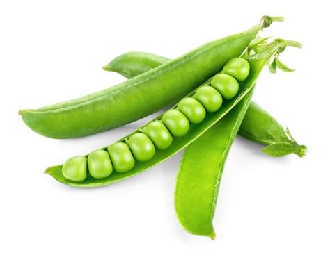 matar a platn seeds for peas ds 10 variety buy pea seeds at allthatgrows matar seeds