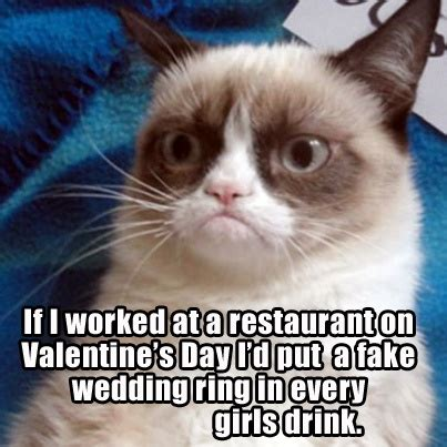 Grumpy Cat Meme Valentines Day - pin by jillian oder on funny pinterest