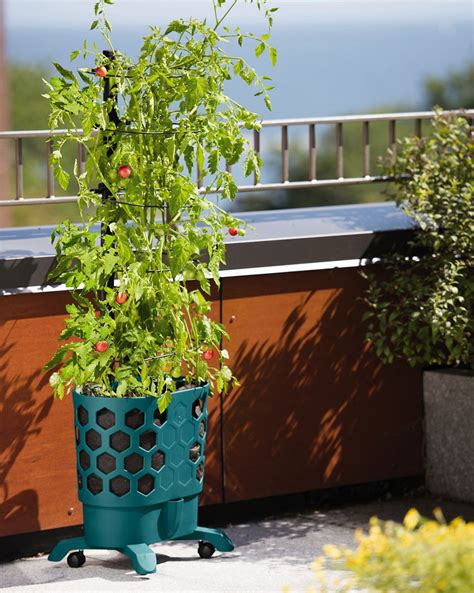 self watering planter gardener s revolution self watering tomato planter with