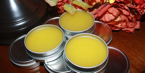 how to repel bed bugs how to make bug repellent salve eco snippets