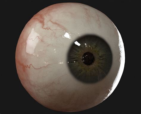 zbrush eyeball tutorial vray eye package by yuri alexander cgvilla