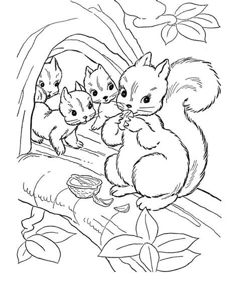cute wild animals coloring pages 25 best ideas about animal coloring pages on pinterest