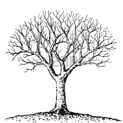dead tree coloring page bare tree clip art cliparts co