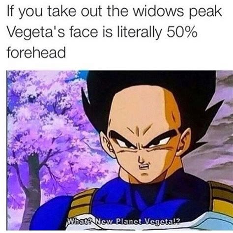 Dbz Memes - 20 hilarious dragon ball memes you ve always wished for