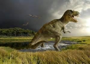 Dinosaur facts herbivorous and carnivorous dinosaurs