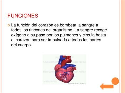 el corazn de los el corazon
