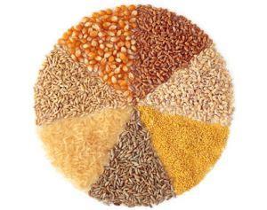 whole grains images whole grains
