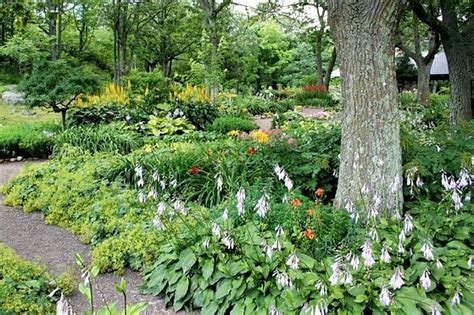 eco friendly landscaping jamesdemers 1 healthygreensavvy
