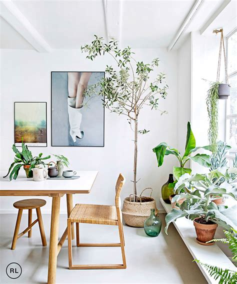 6 rooms that prove plants are the best accessories by