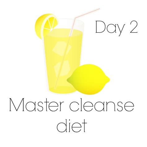 40 Day Diet Detox by Master Cleanse My 40 Day Journey Lemonade Diet Book