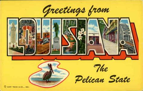 Louisiana State Court Search Greetings From Louisiana The Pelican State Large Letter Postcard