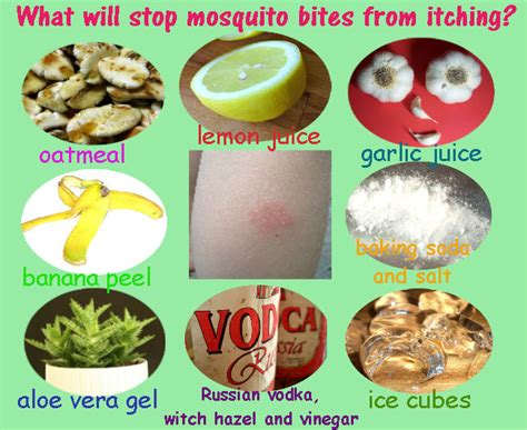 how to stop itching itch relief for mosquito bites and swellings