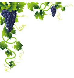 grape vine clip art free clipart best